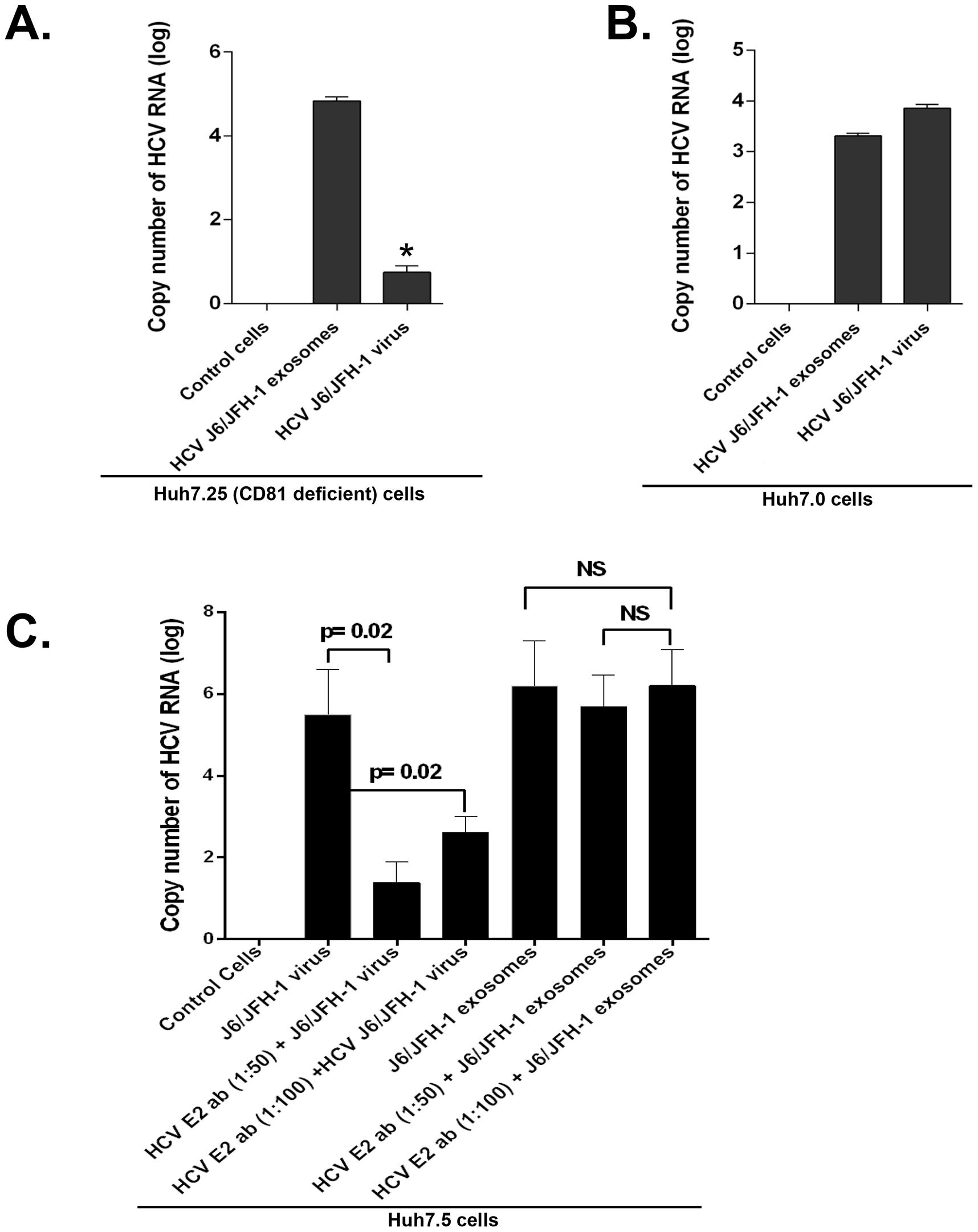 CD81 deficiency or anti-HCV E2 antibody treatment does not block effective HCV transmission by exosomes.