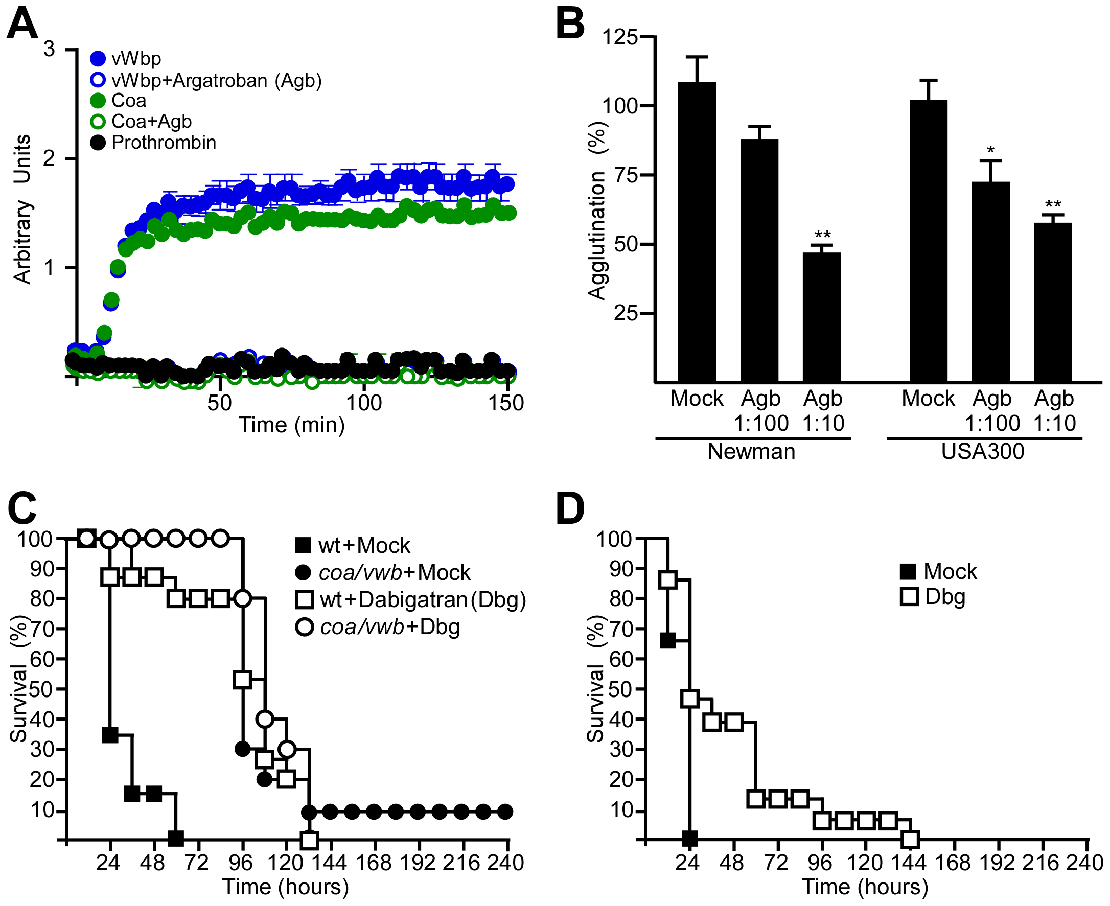 Direct thrombin inhibitors block a key step in staphylococcal pathogenesis.