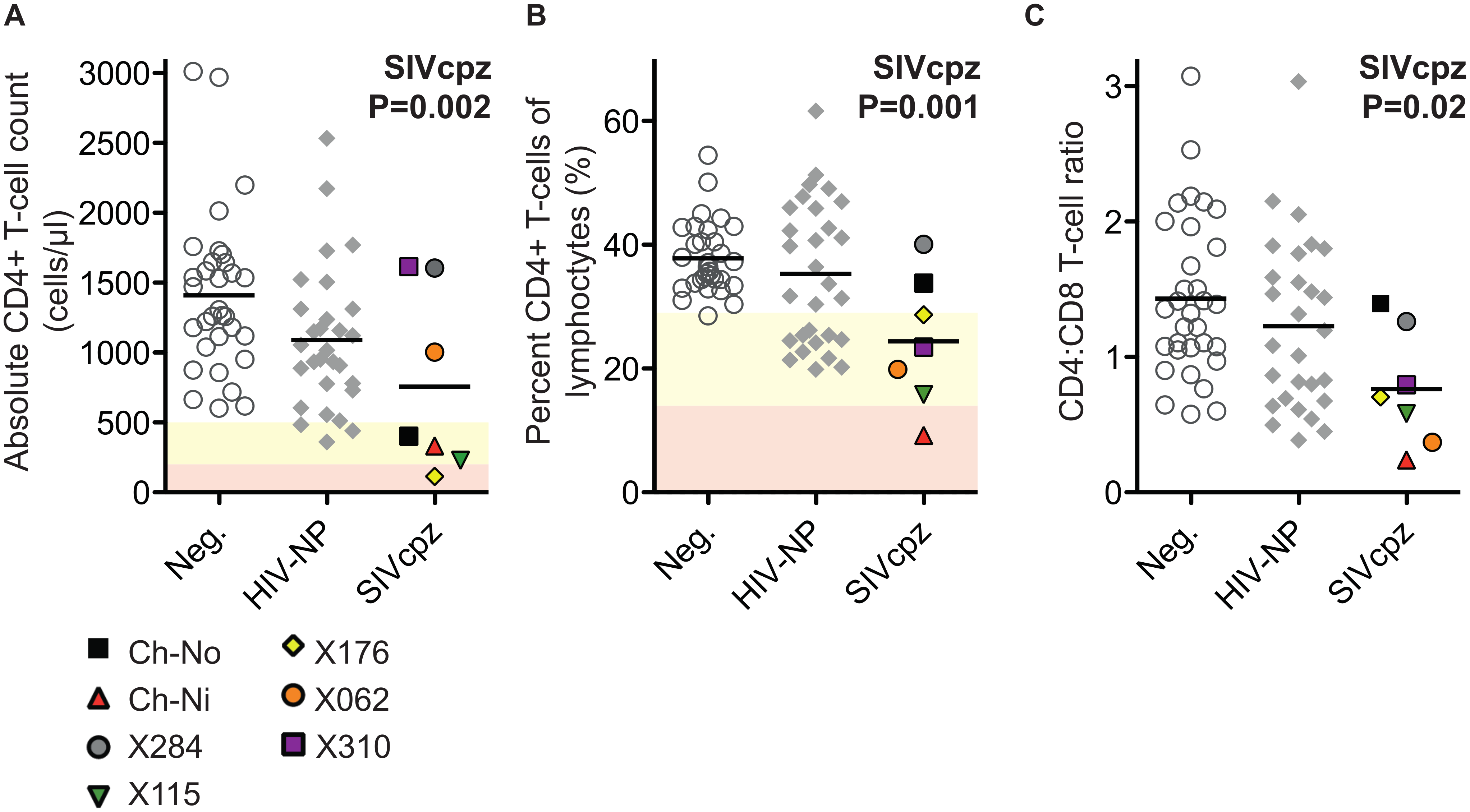 Comparison of CD4+ T-cell levels in uninfected, HIV-1 infected and SIVcpz infected animals.
