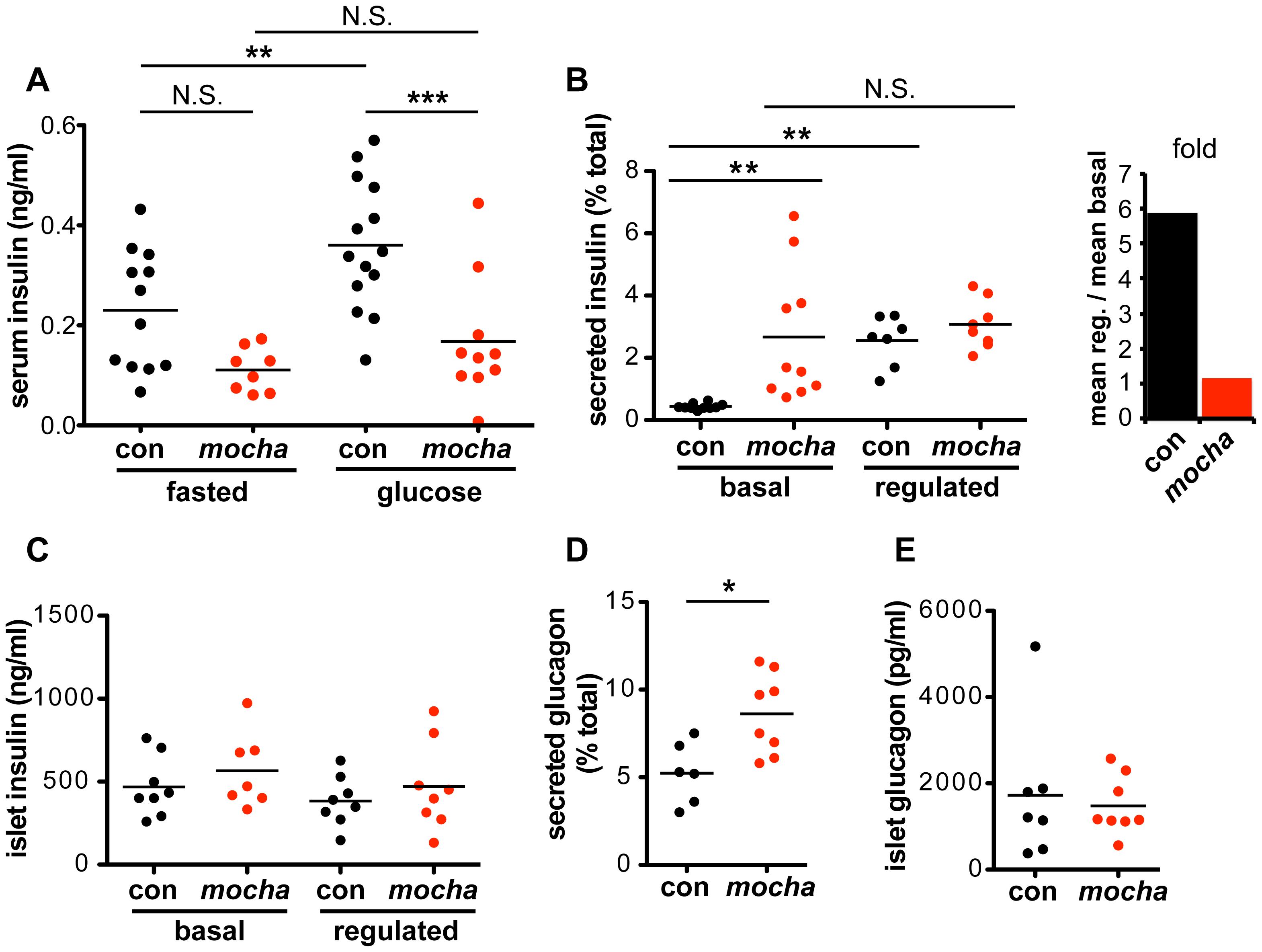 <i>mocha</i> mice show dysregulated secretion of insulin and glucagon.