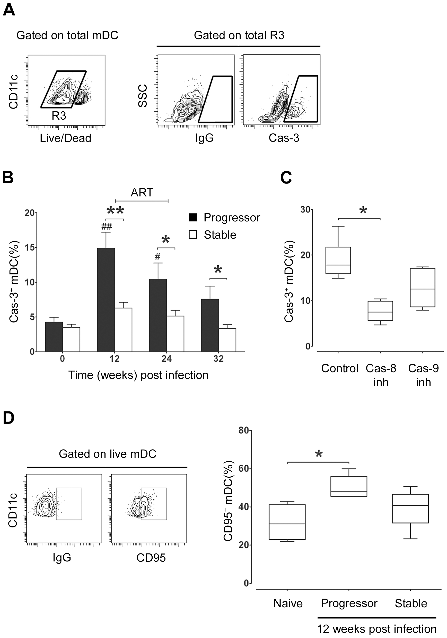 Apoptosis of lymph node mDC increases in progressive but not stable SIV infection.