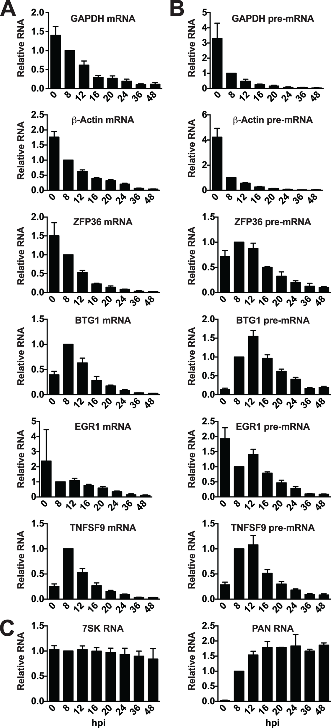 Candidate ORF57-bound pre-RNAs display distinct steady-state level kinetics during lytic reactivation.