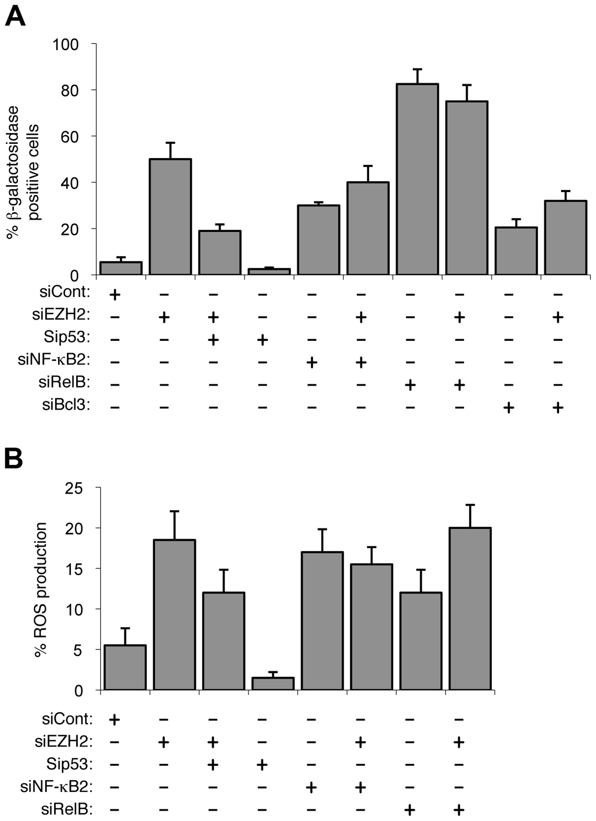 EZH2 siRNA associated senescence and ROS production is p53 dependent.