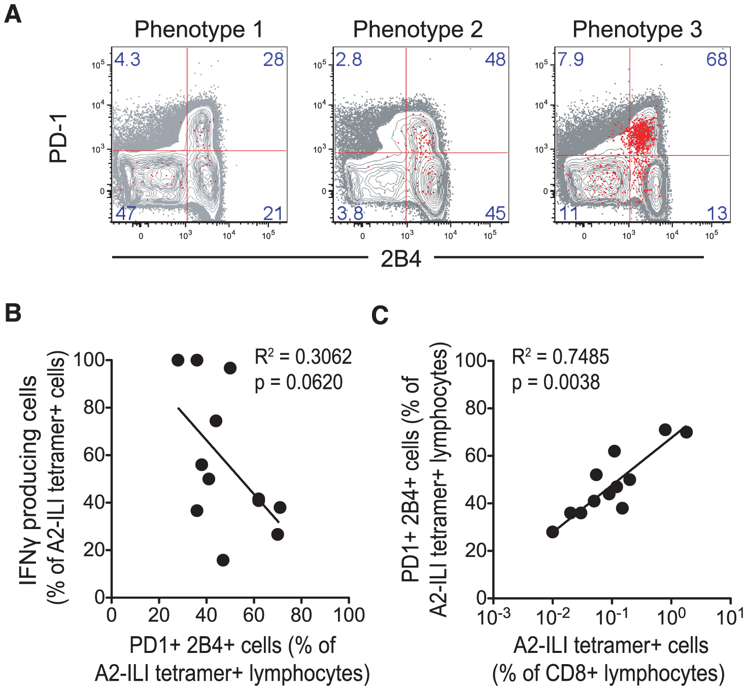 Expression of inhibitory receptors is associated with increased ILI-specific CD8 T cell frequency but impaired functionality.