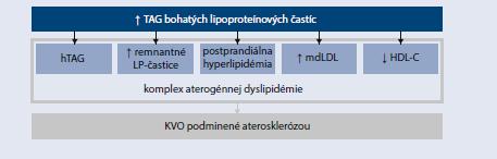 Schéma 15.2 | Charakteristika aterogénnej dyslipidémie