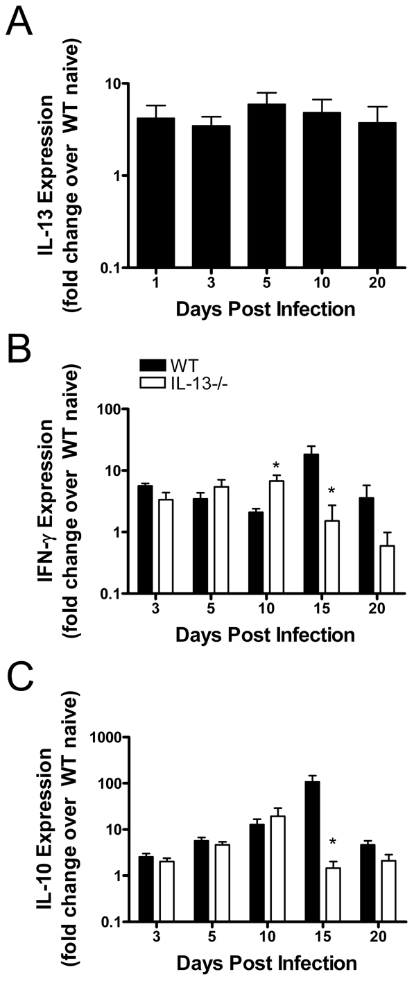 IL-13 expressed in the WT lung after <i>Chlamydia muridarum</i> (<i>Cmu)</i> infection modulates cytokines important in pathogen clearance.