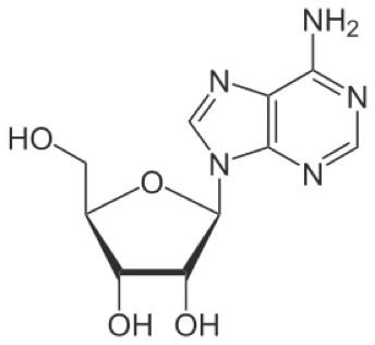 Obr. Vzorec molekuly adenozínu