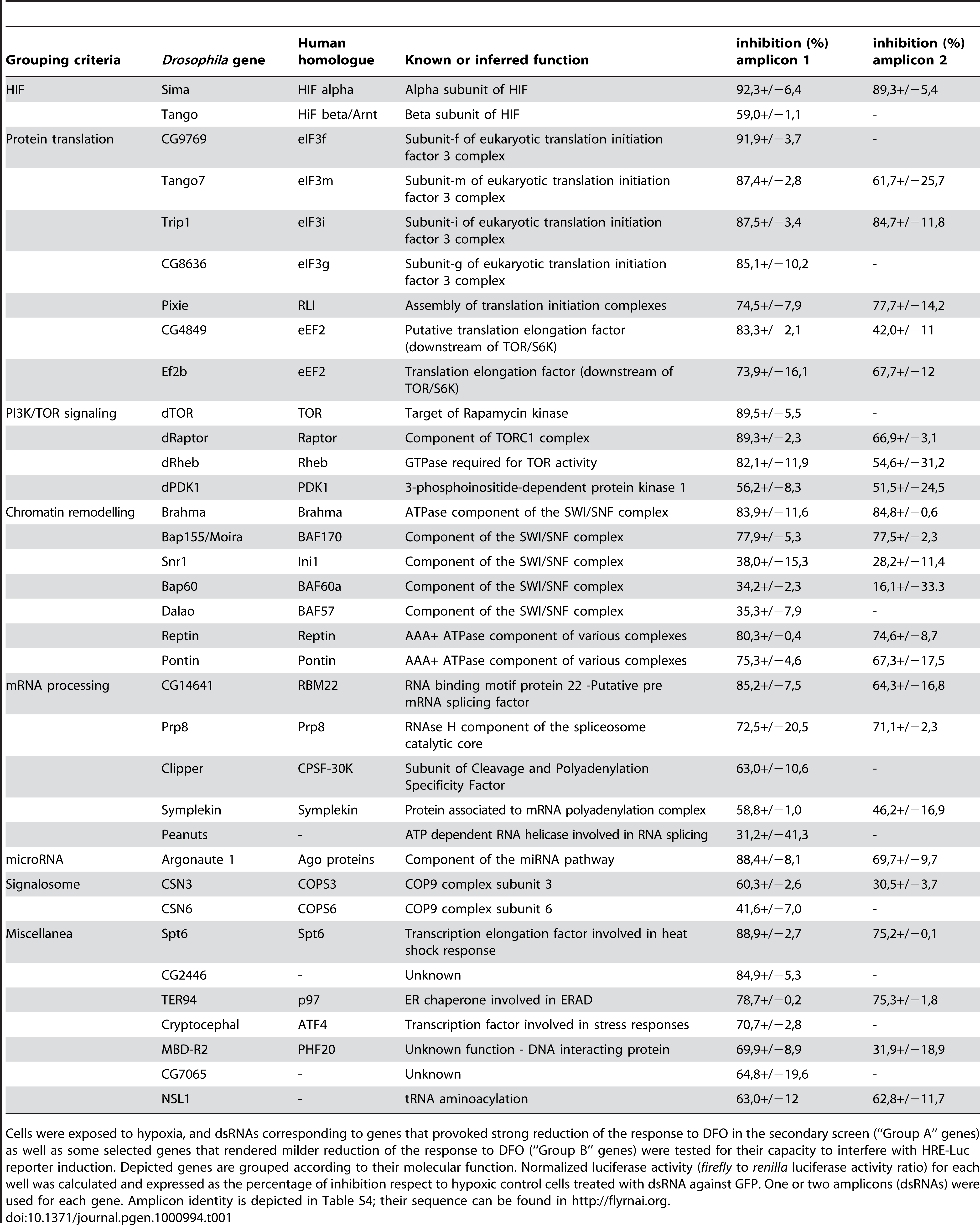 List of genes that scored as positives at the tertiary screen.