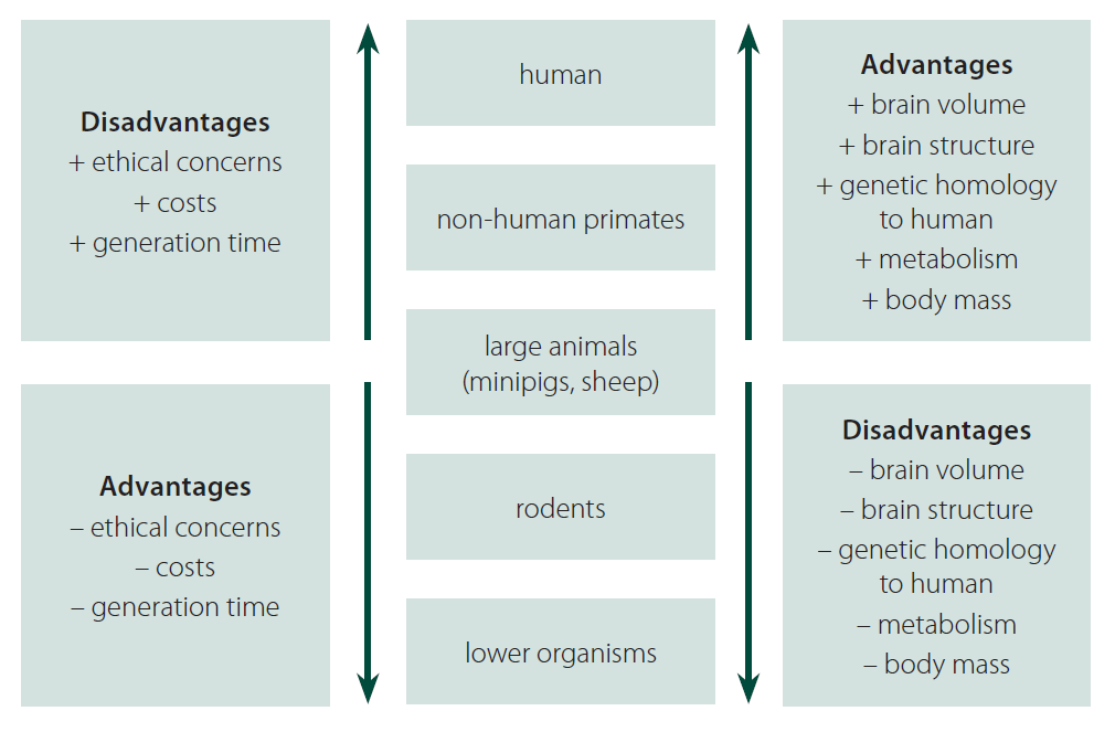 Fig. 5. Advantages and disadvantages in different animal models for HD and other neurodegenerative disorders.