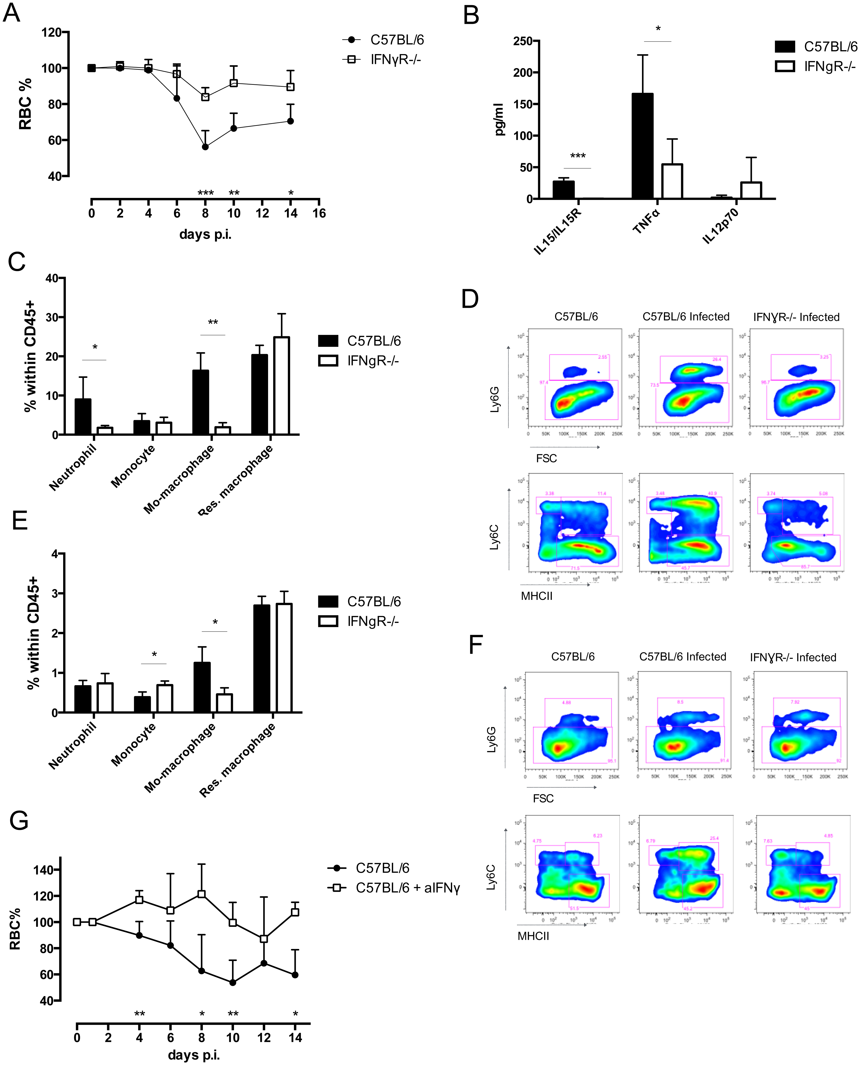 Analysis of cell composition and serum cytokines in IFNγR-/- mice.