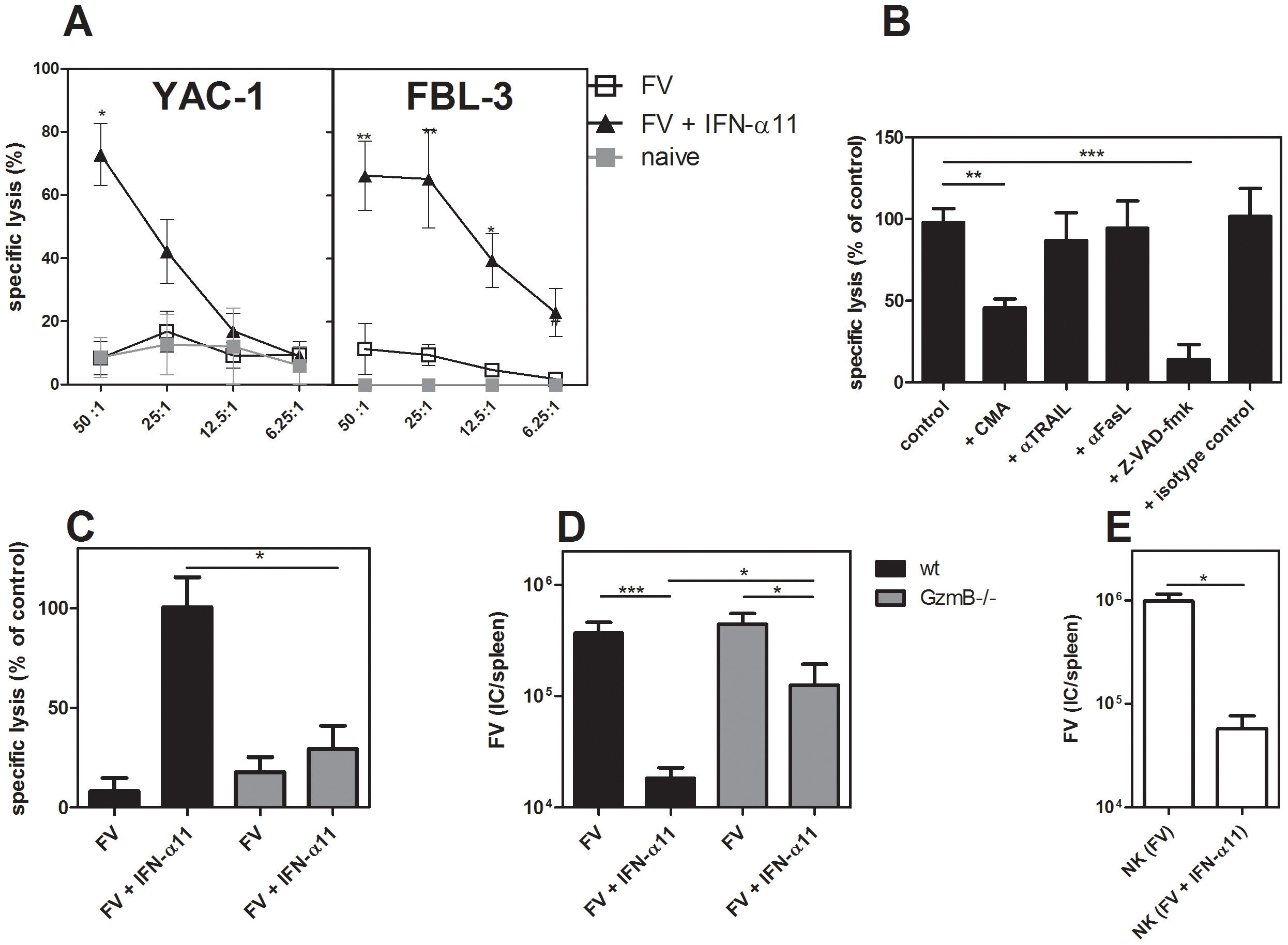 Target cell killing by NK cells from IFN-α11-treated mice.