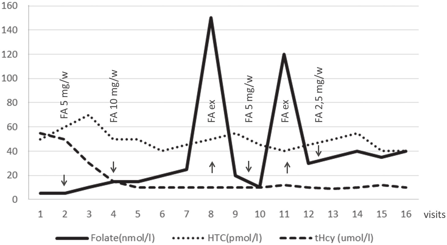 Fig. 4. Monitoring of plasma folate and tHcy in homozygote MTHFR 677TT after supplementation with folic acid (FA)
