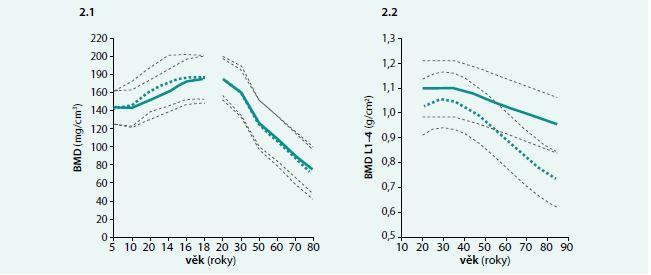 Závislost volumetrické BMD (2.1) a plošné BMD (2.2) na věku u žen (zelená silná přerušovaná křivka) a u mužů (zelená silná plná křivka); odchylky ± 1 SD (tečkovaně). Upraveno podle [49–50]