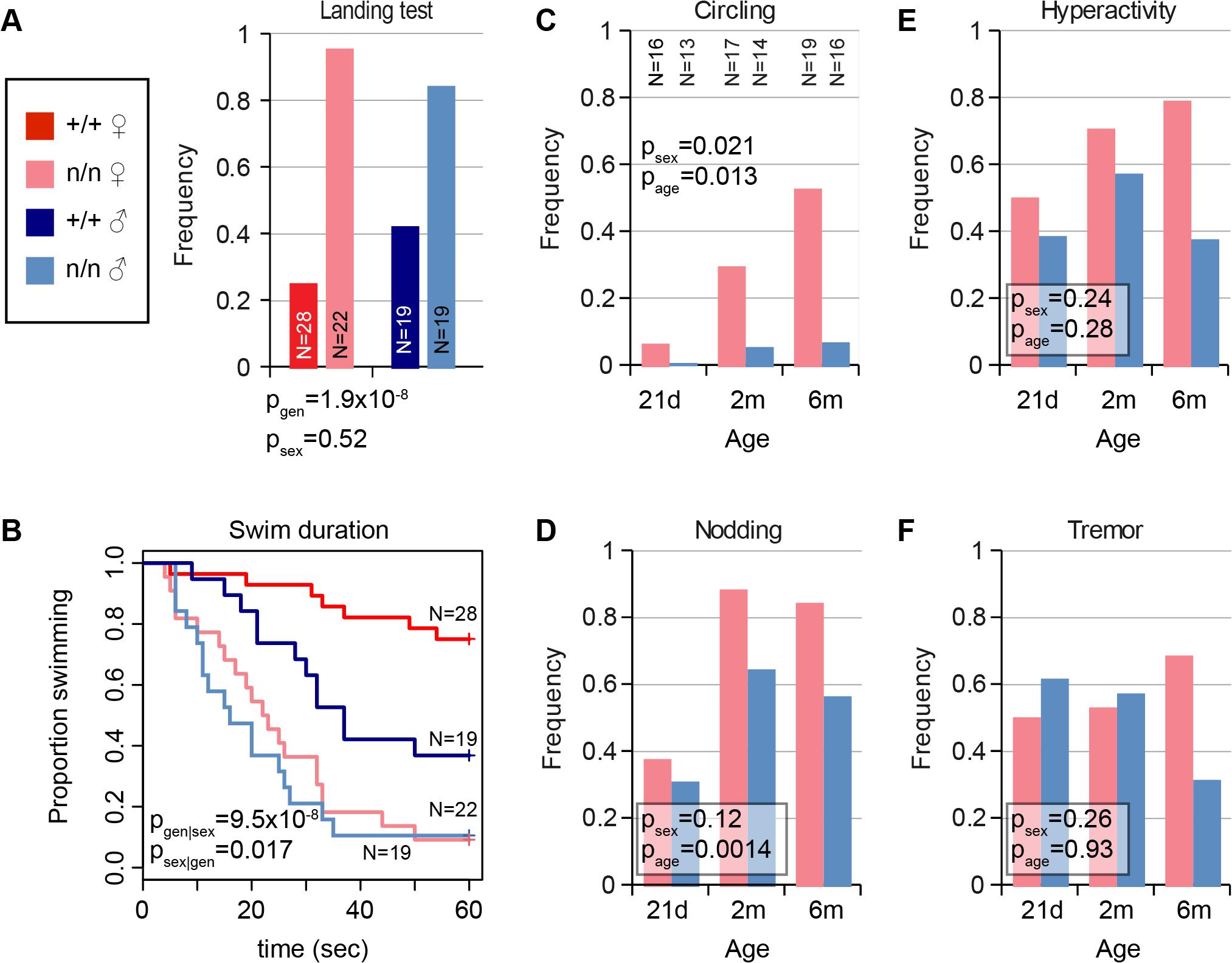Mutant <i>nmf9</i> animals show age and sex-dependent vestibular dysfunction.