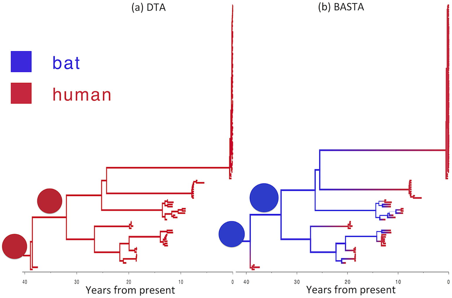 Reconstructed history of zoonosis in Ebola virus is strongly affected by the method.