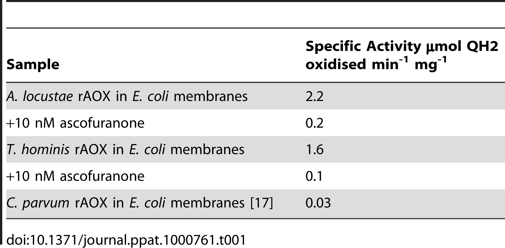 Rates of oxidation of 150 µM ubiquinol-1 by these membrane fractions.