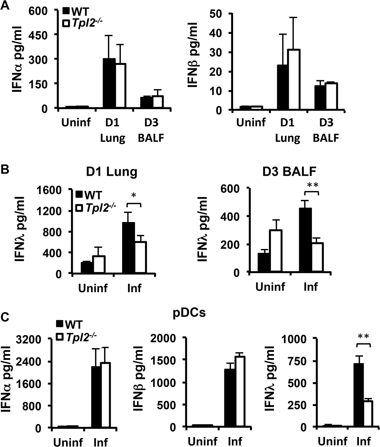 Tpl2 is required for optimal IFNλ production during influenza virus infection <i>in vitro</i> and <i>in vivo</i>.