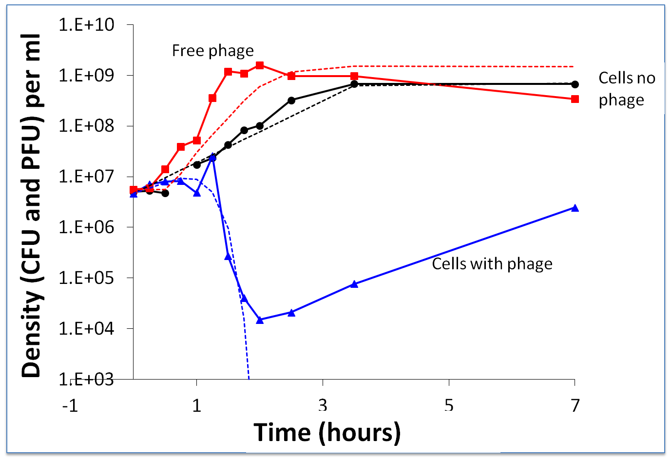 Short-term bacterial and phage growth dynamics in the absence of immunity: change in the density of WT bacteria and WT phage.