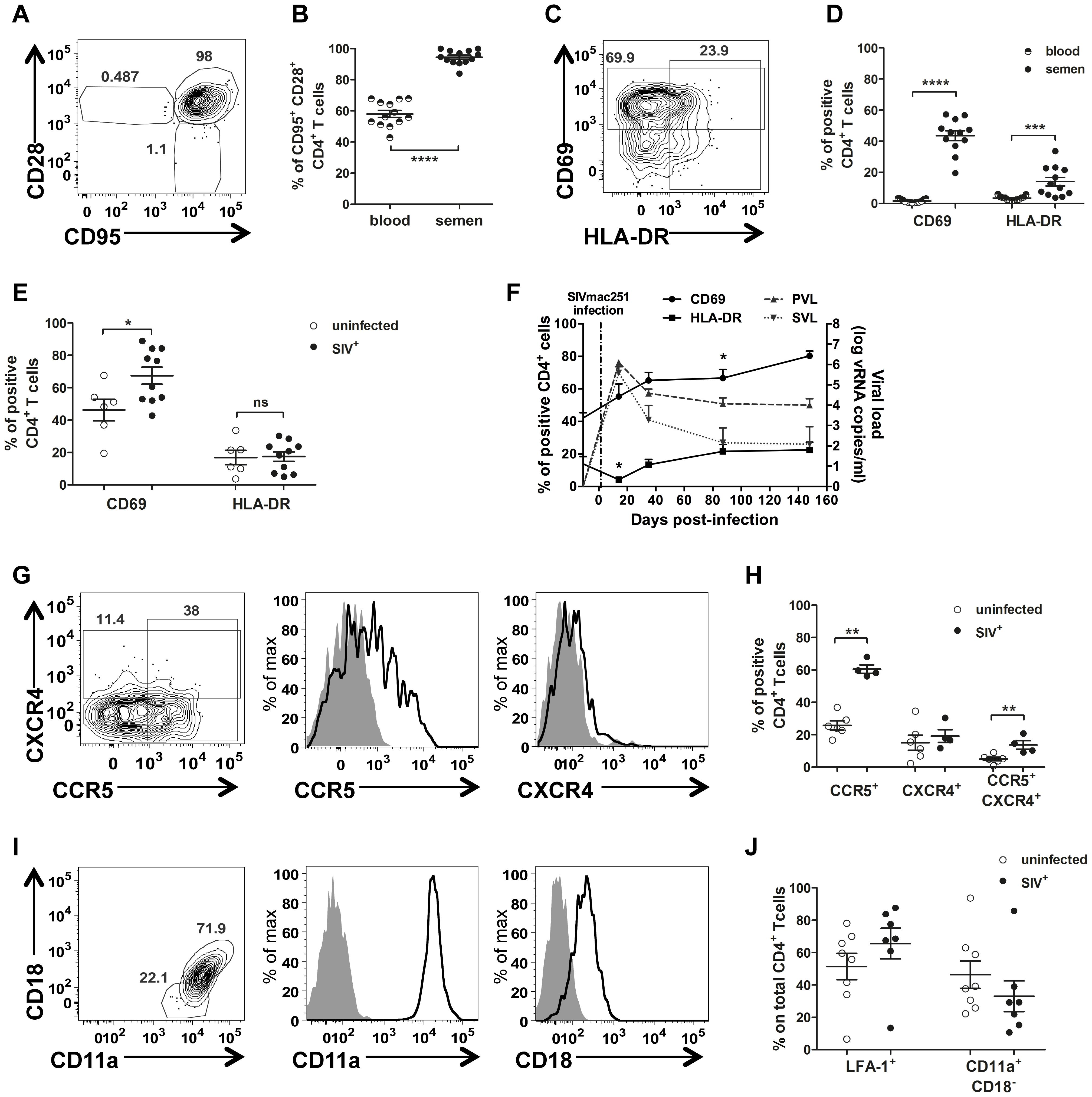 Semen CD4<sup>+</sup> T-cell phenotype.
