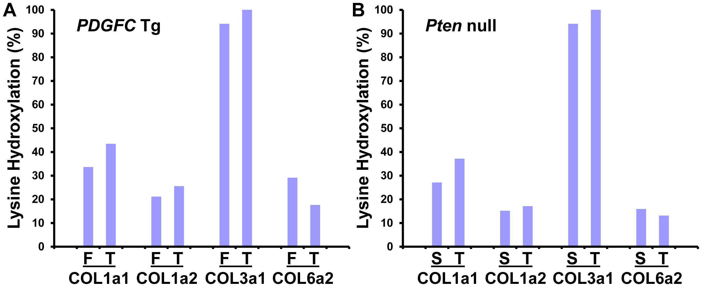 Percentage of peptides with lysine hydroxylation identified for COL1A1, COL1A2, COL3A1, and COL6A2.