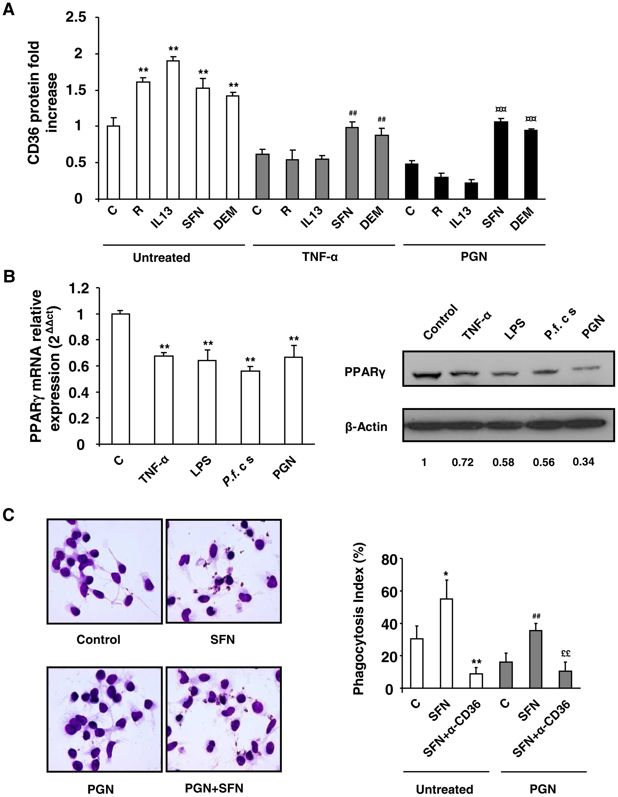 Nrf2 activators promote CD36 and increase <i>P.falciparum</i> clearance by human MDMs in inflammatory conditions.