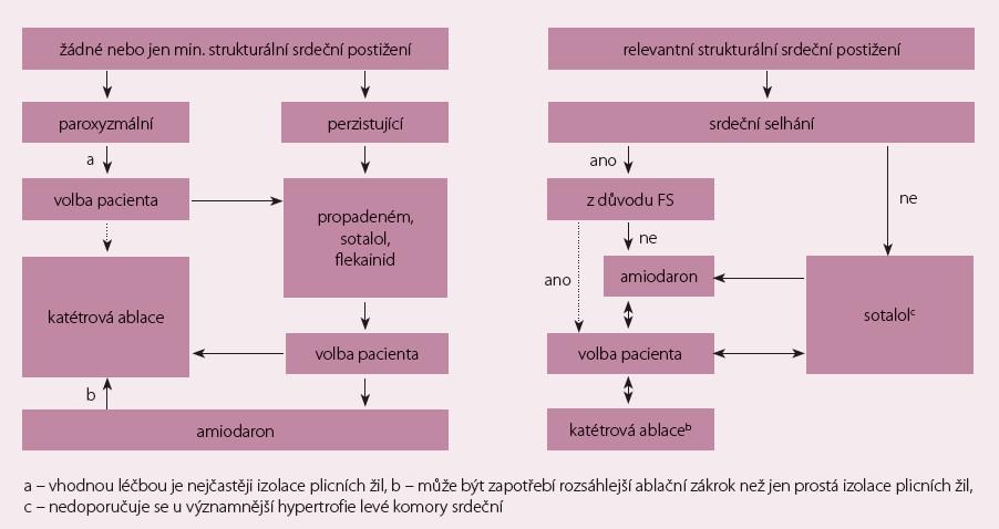 Schéma 1. Postavení radiofrekvenční katetrové ablace v léčbě FS v závislosti na přítomnosti strukturálního srdečního onemocnění, typu arytmie a preferenci pacienta. Pro paroxyzmální typ FS je doporučení v třídě I (úroveň důkazů A), pro perzistující FS v třídě IIa (úroveň důkazů B), pro dlouhodobou perzistující FS je pak doporučení v třídě IIb (úroveň důkazů B).