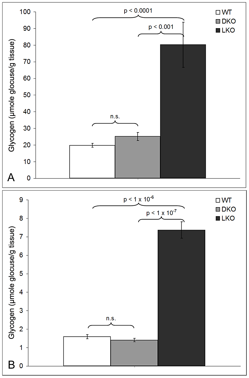 Glycogen levels in skeletal muscle and brain in 12-month-old wt, LKO, and DKO mice (µmol glucose/gm tissue).
