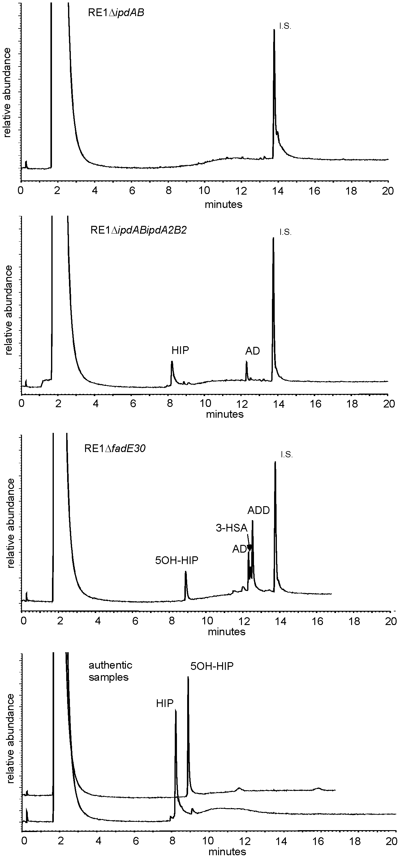 Gas chromatography profiles showing the formation of methylhexahydroindanone propionate intermediates during whole cell biotransformations of 4-androstene-3,17-dione (AD) by mutant strains of <i>R. equi</i> RE1 at T = 120 hours.