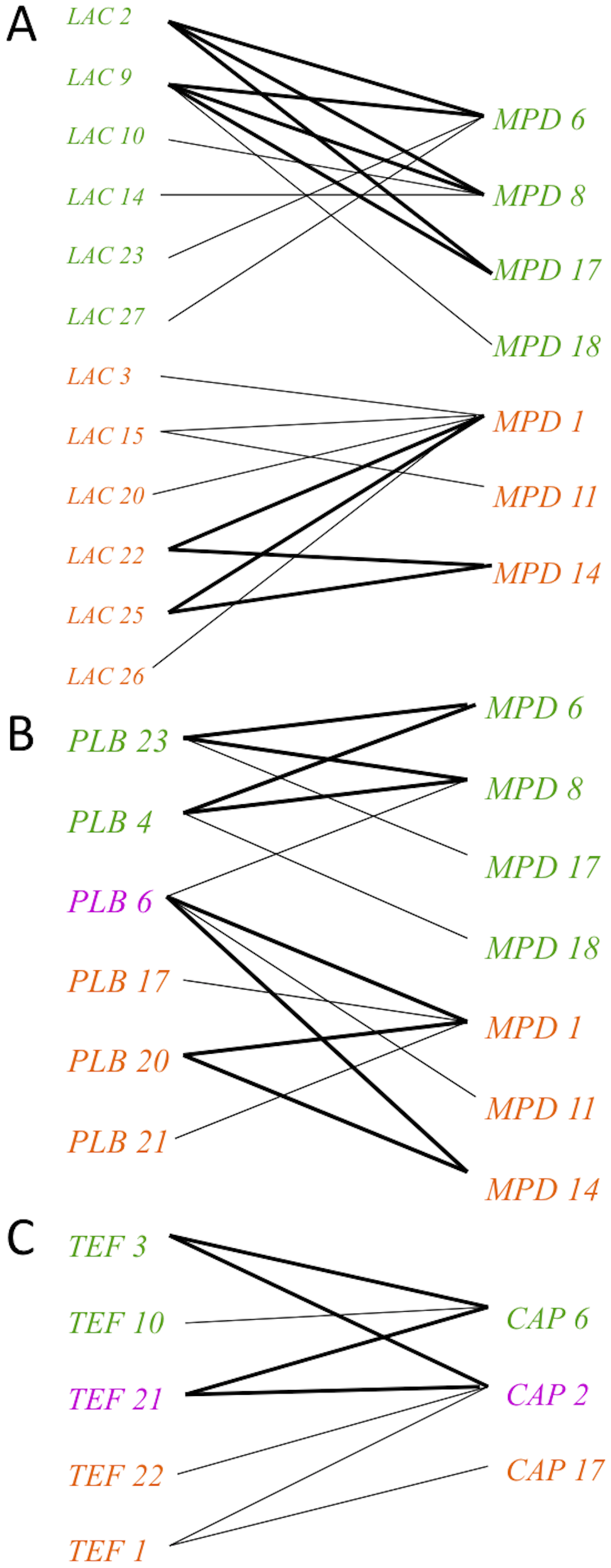 Evidence for genetic recombination within the VGIII population, particularly within alleles unique to the VGIIIa lineage.