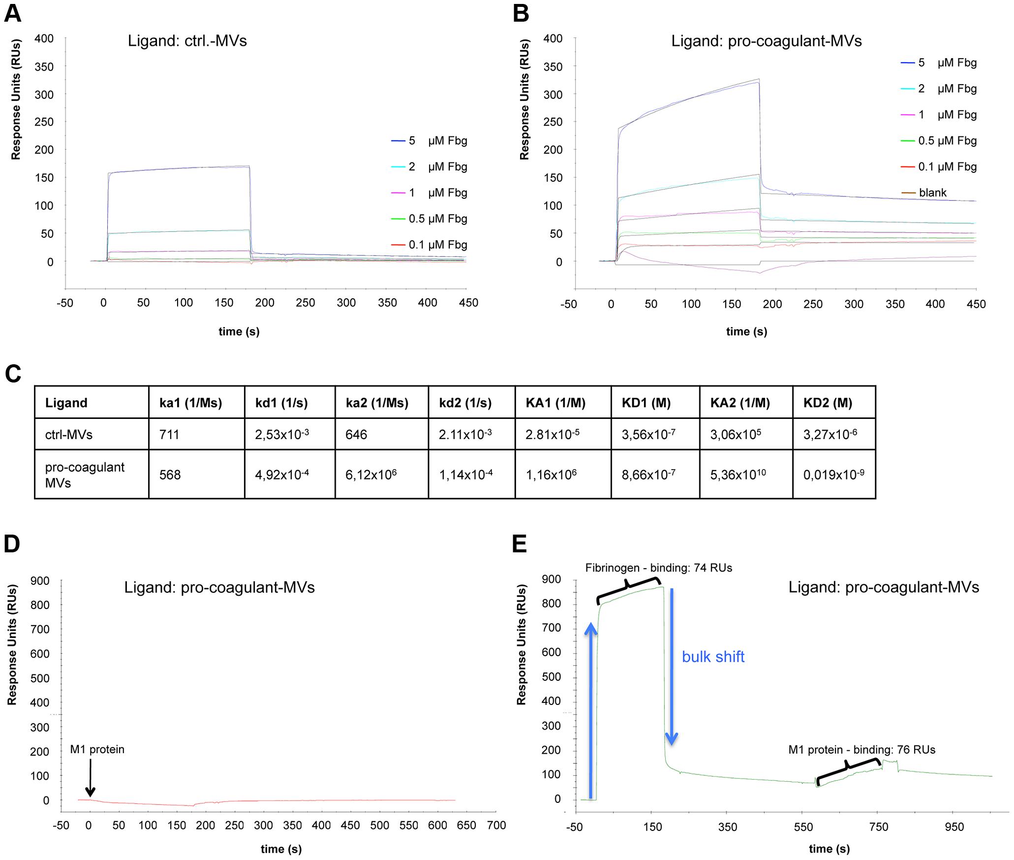 Binding properties of MV surfaces measured by SPR.