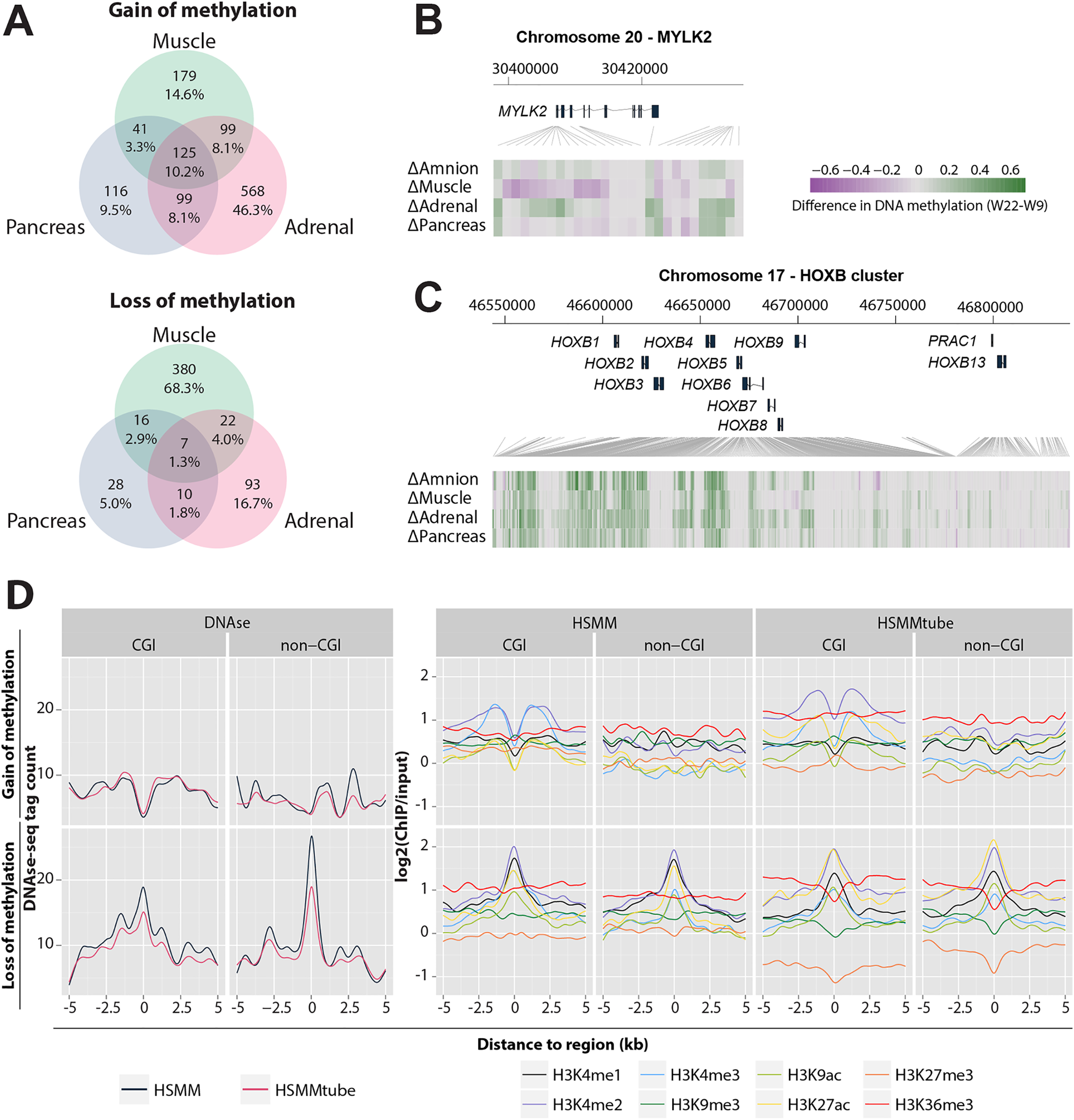 Association of gain and loss of DNA methylation, DNAse I hypersensitive sites and histone modifications.