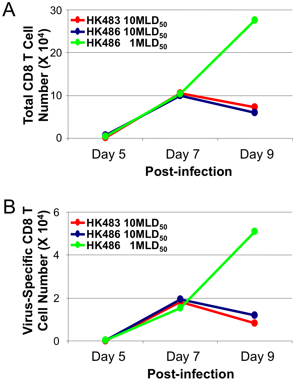 Premature contraction of CD8 T cells in mice infected with lethal dose of highly pathogenic H5N1 influenza viruses.