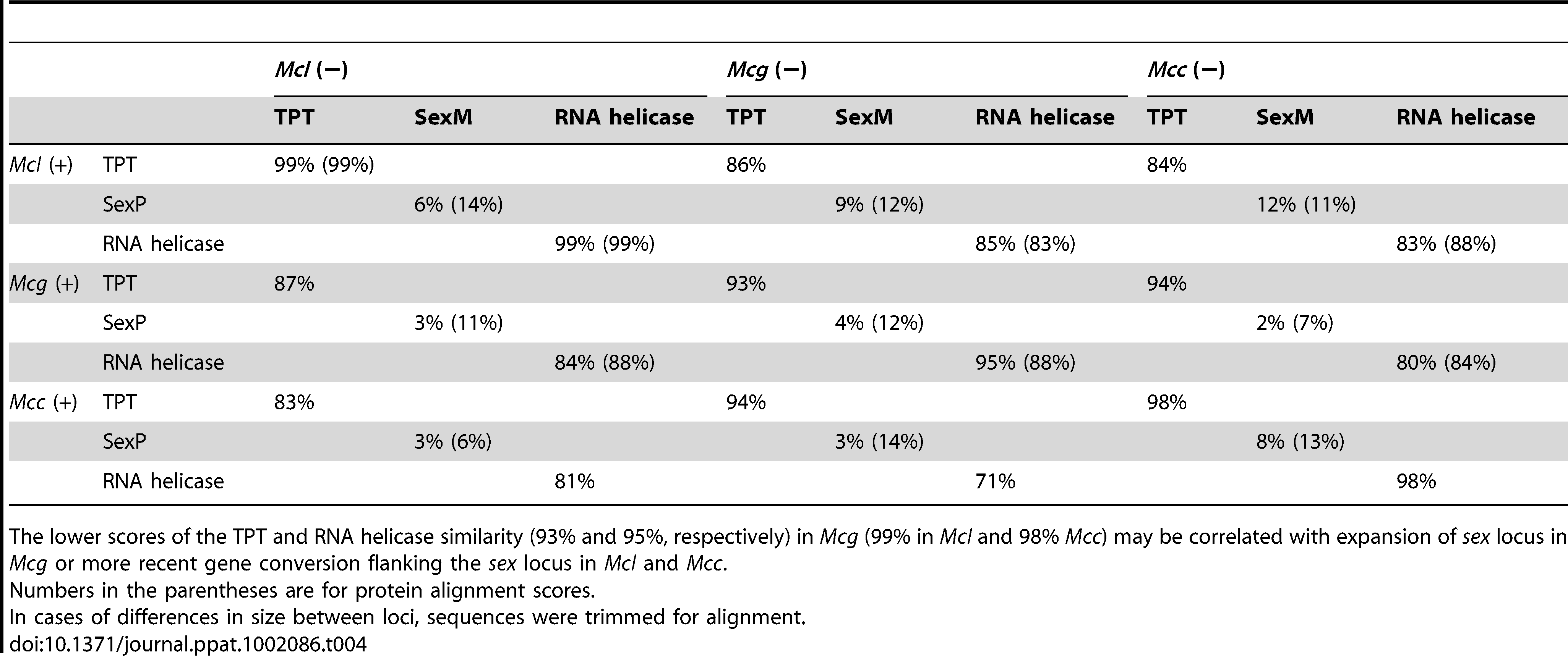 DNA and deduced protein sequence comparison between three subspecies.