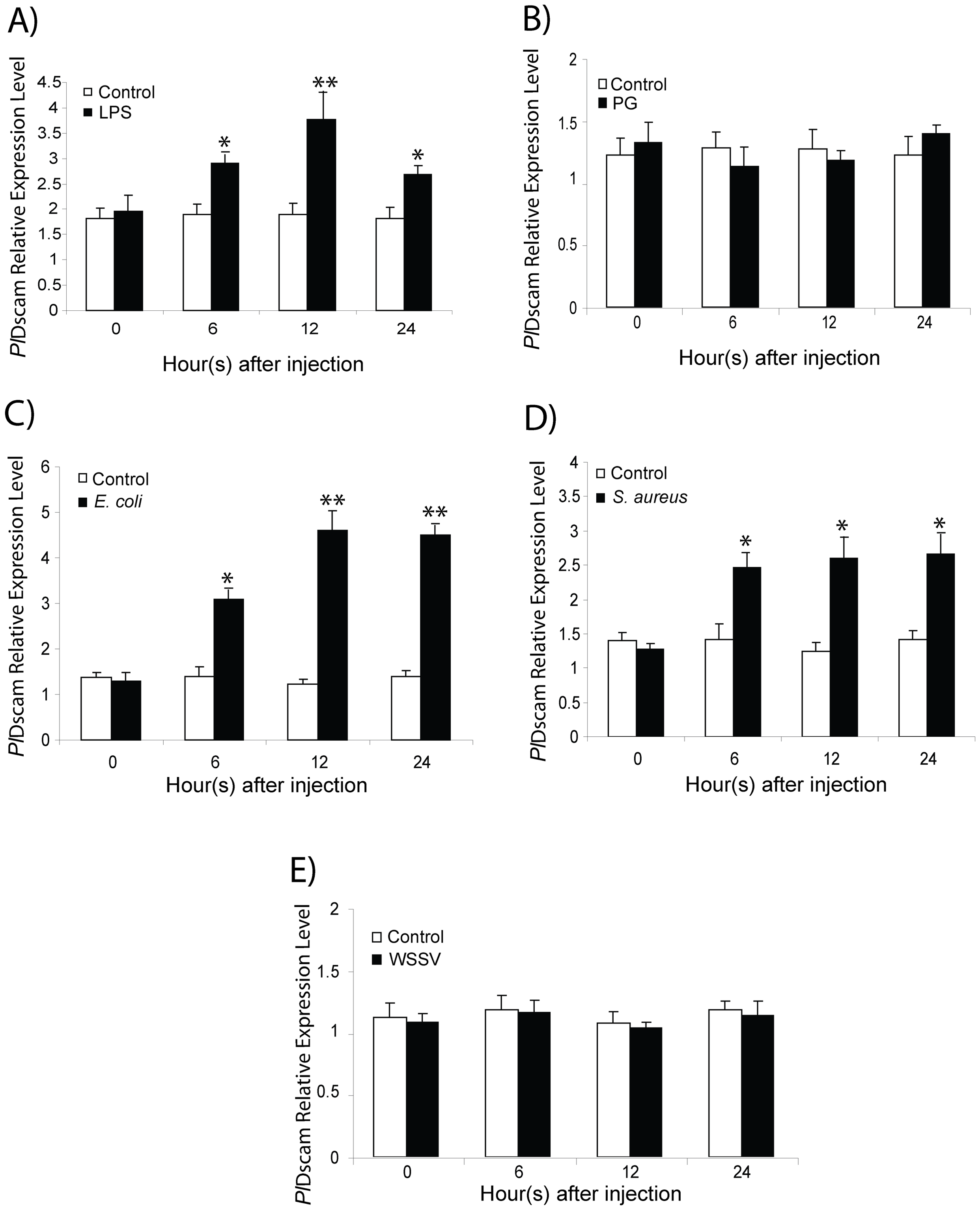 Expression profiles of <i>Pl</i>Dscam in response to immune challenge.
