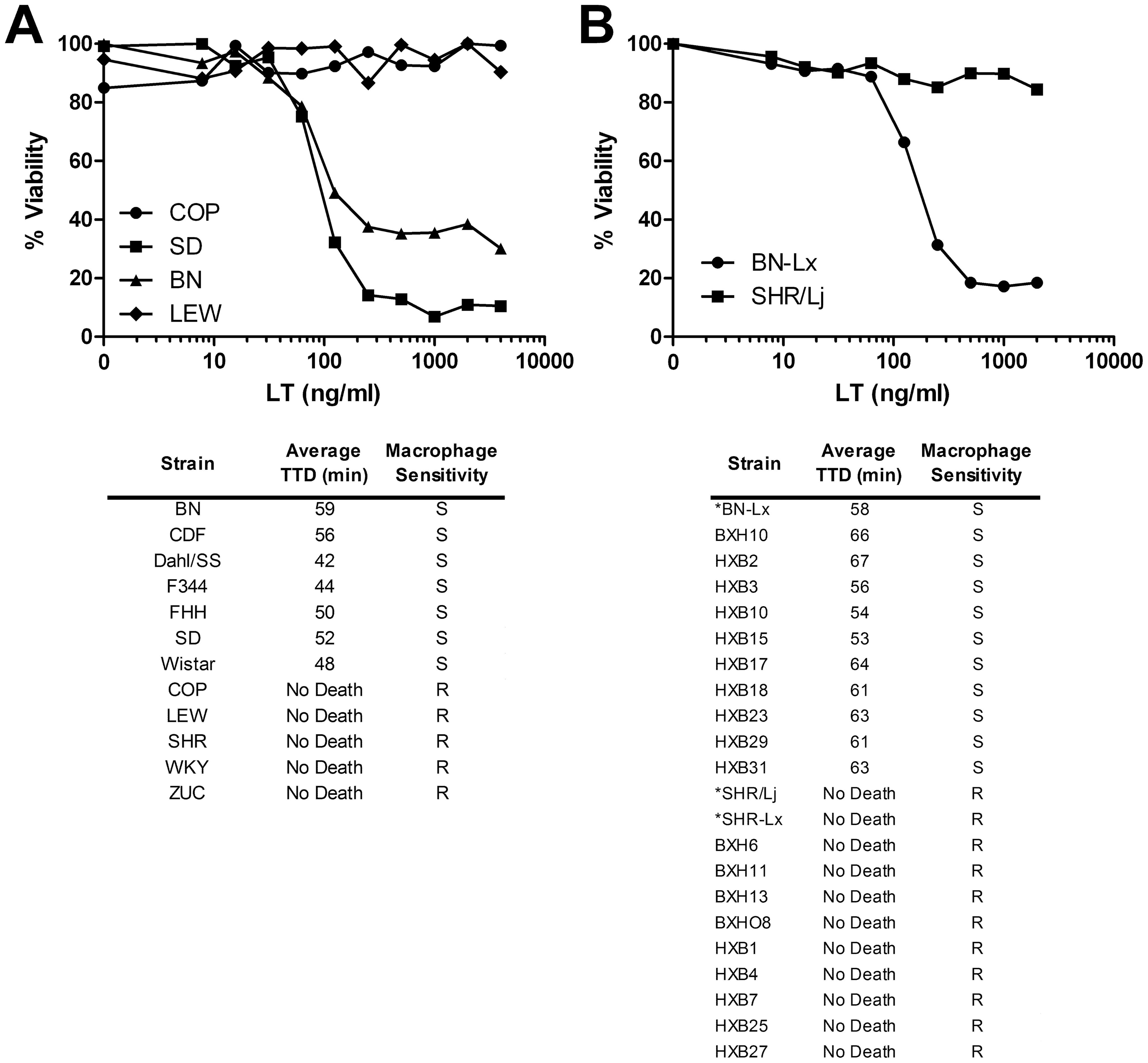 LT sensitivity in rat strains correlates perfectly with macrophage sensitivity.