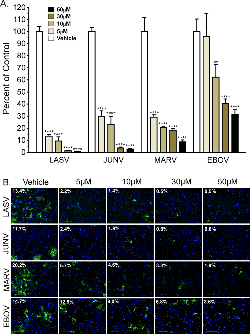 Synta66 inhibits egress of authentic filoviruses and arenaviruses.