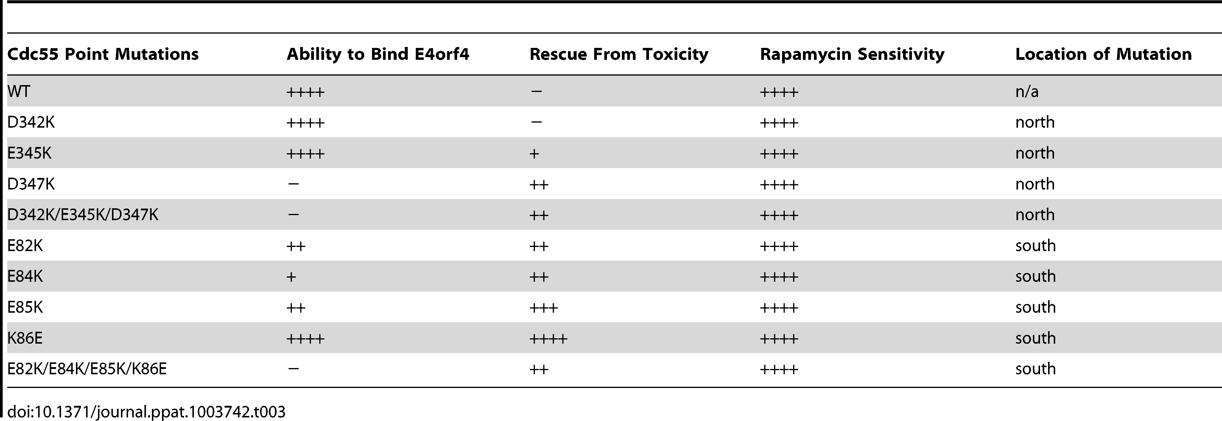 Summary of cell growth assays with Cdc55 mutants.