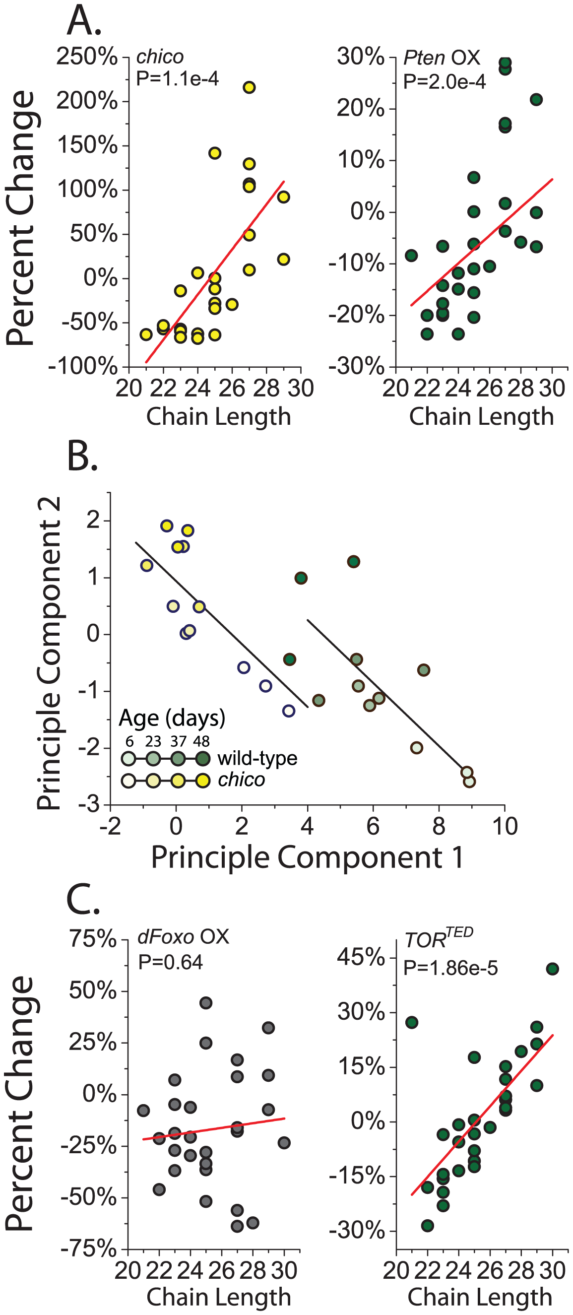 Reduced insulin signaling results in an increased proportion of longer chain CHC.
