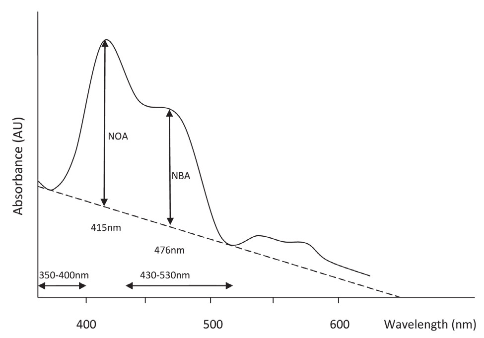 Fig. 4. CSF spectrophotometry evaluation according to the recent recommendations. Spectrophotometric curve above tangential baseline. Described in the text. NOA – Net Oxyhemoglobin Absorbance, NBA – Net Bilirubin Absorbance