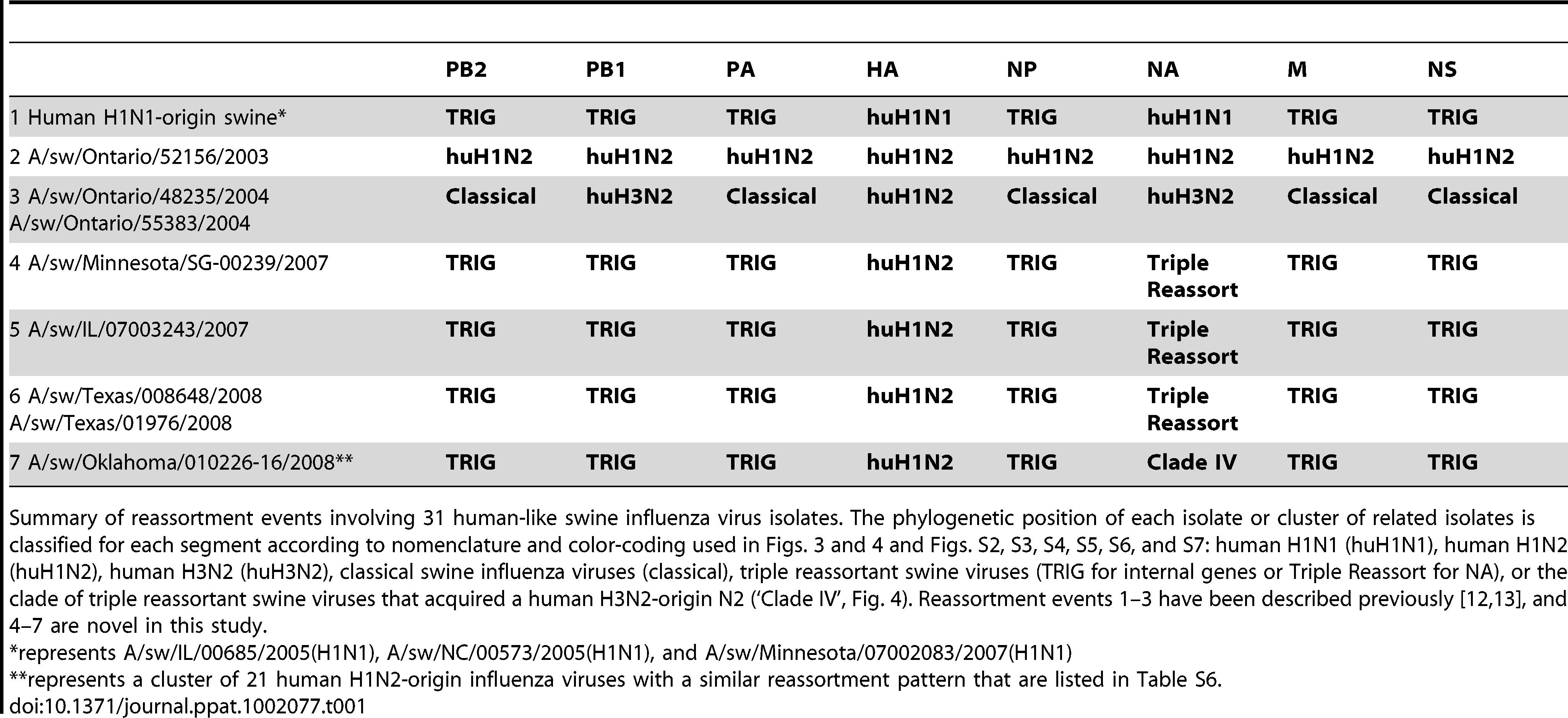 Whole-genome reassortment of human-origin swine influenza viruses.