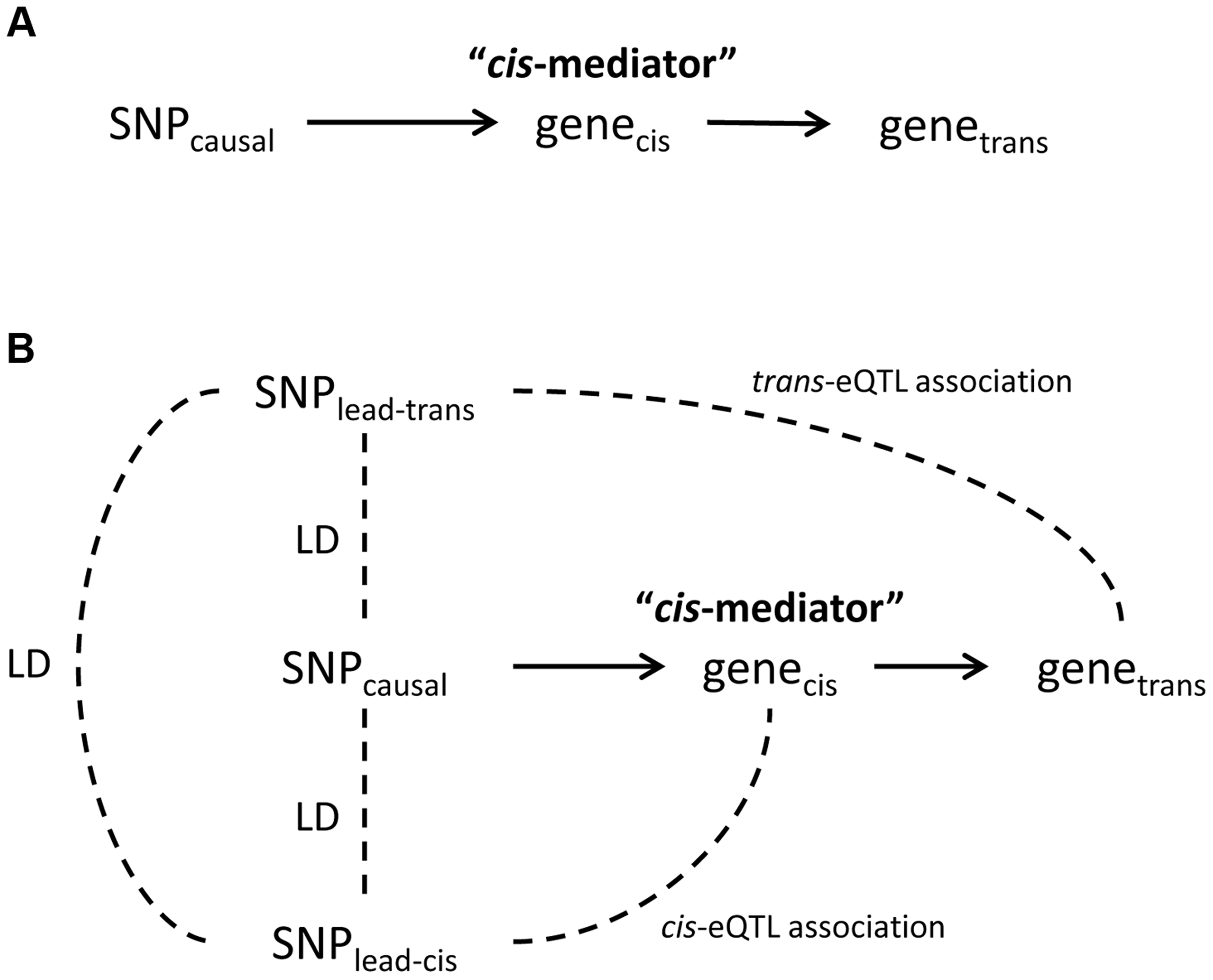 Theoretical framework for <i>cis</i>-mediation of <i>trans</i>-eQTLs.