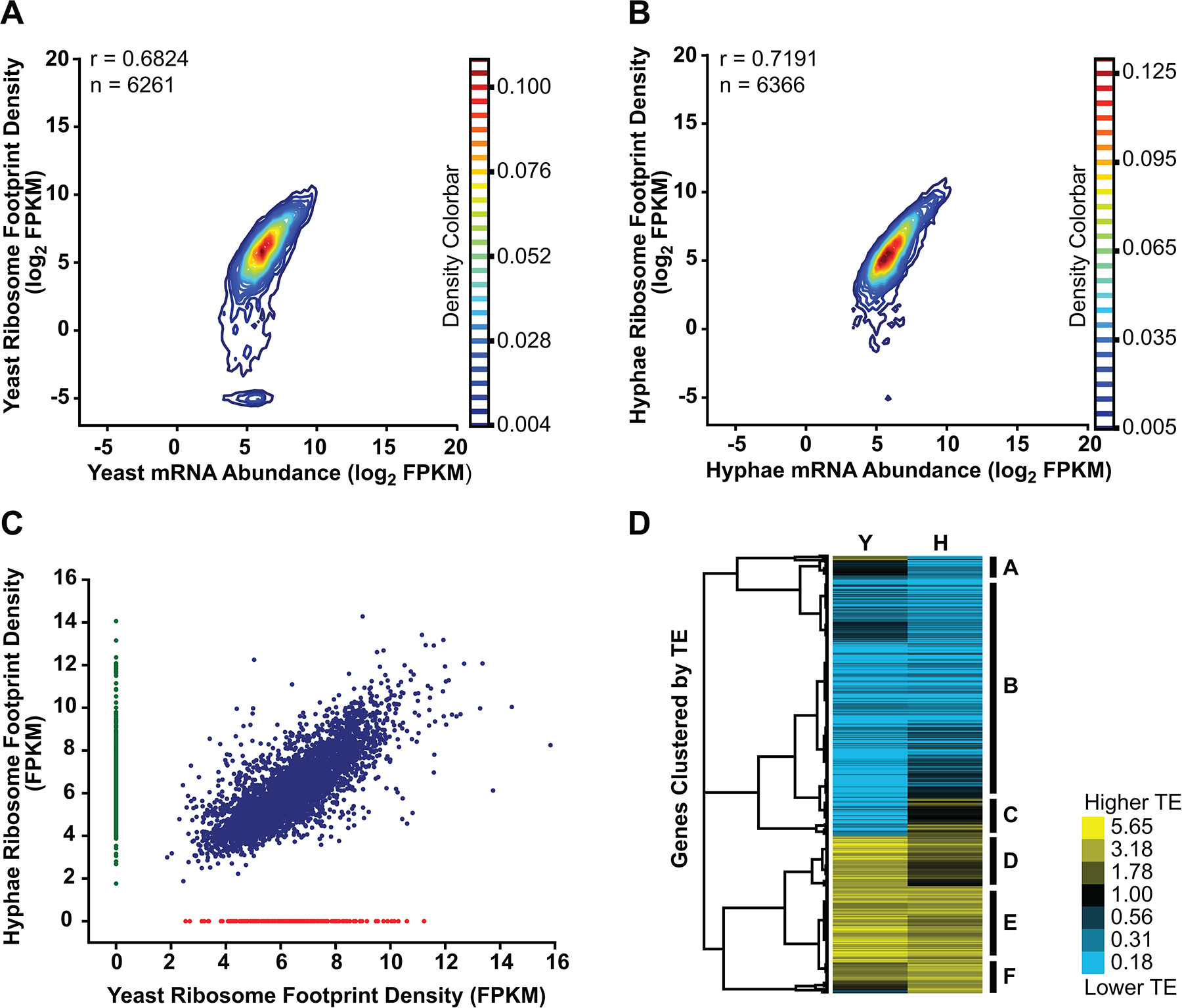 Transcriptional and translational regulation contributes to gene expression in <i>Histoplasma</i>.