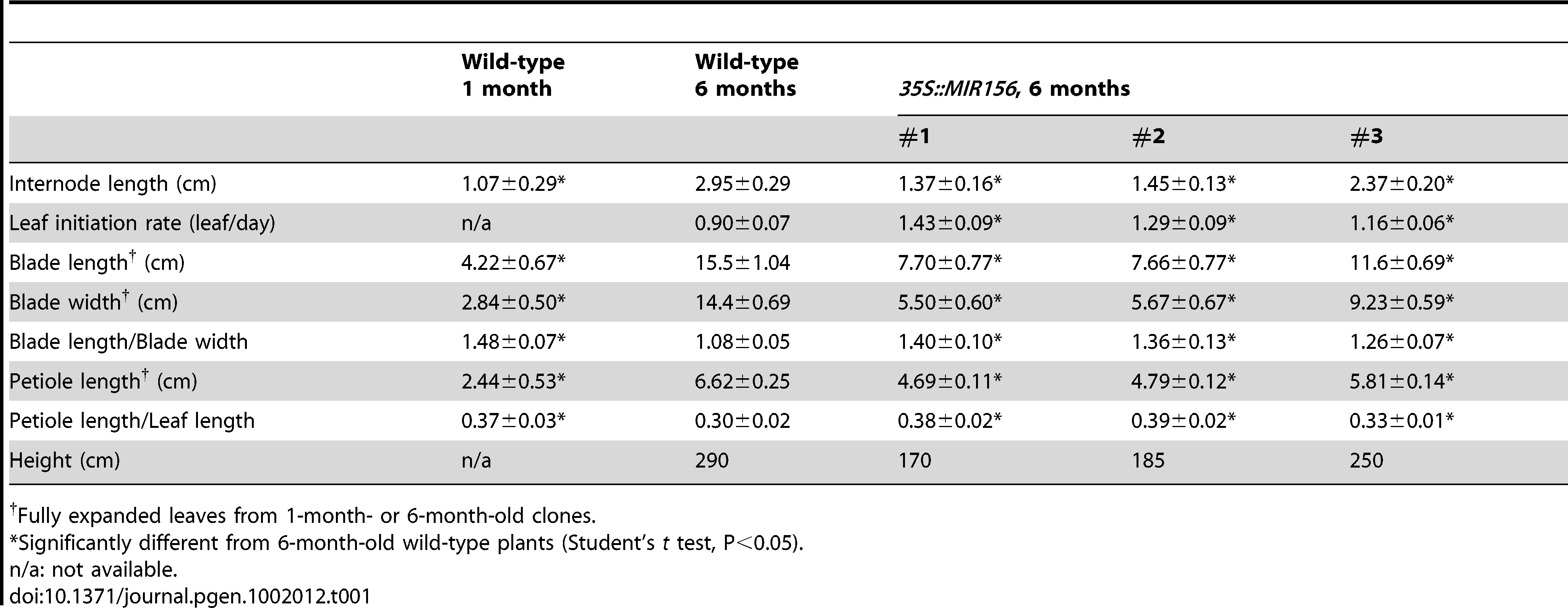 Growth characteristics of <i>35S::MIR156 P. x canadensis</i> plants.