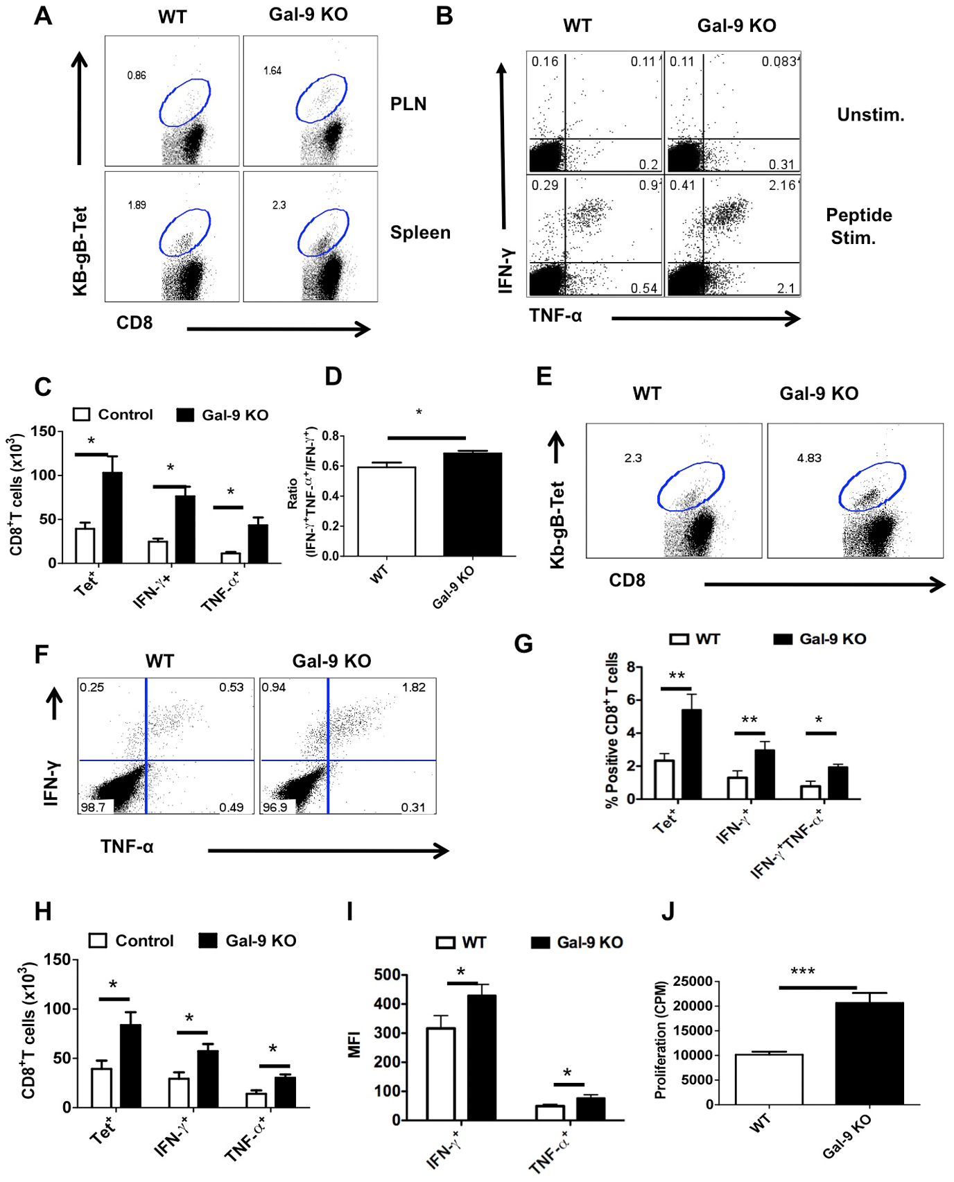 Galectin-9 KO animals develop sustained virus-specific CD8<sup>+</sup> T cells memory responses.