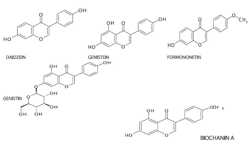 Chemická struktura některých isoflavonů BIOCHANIN A