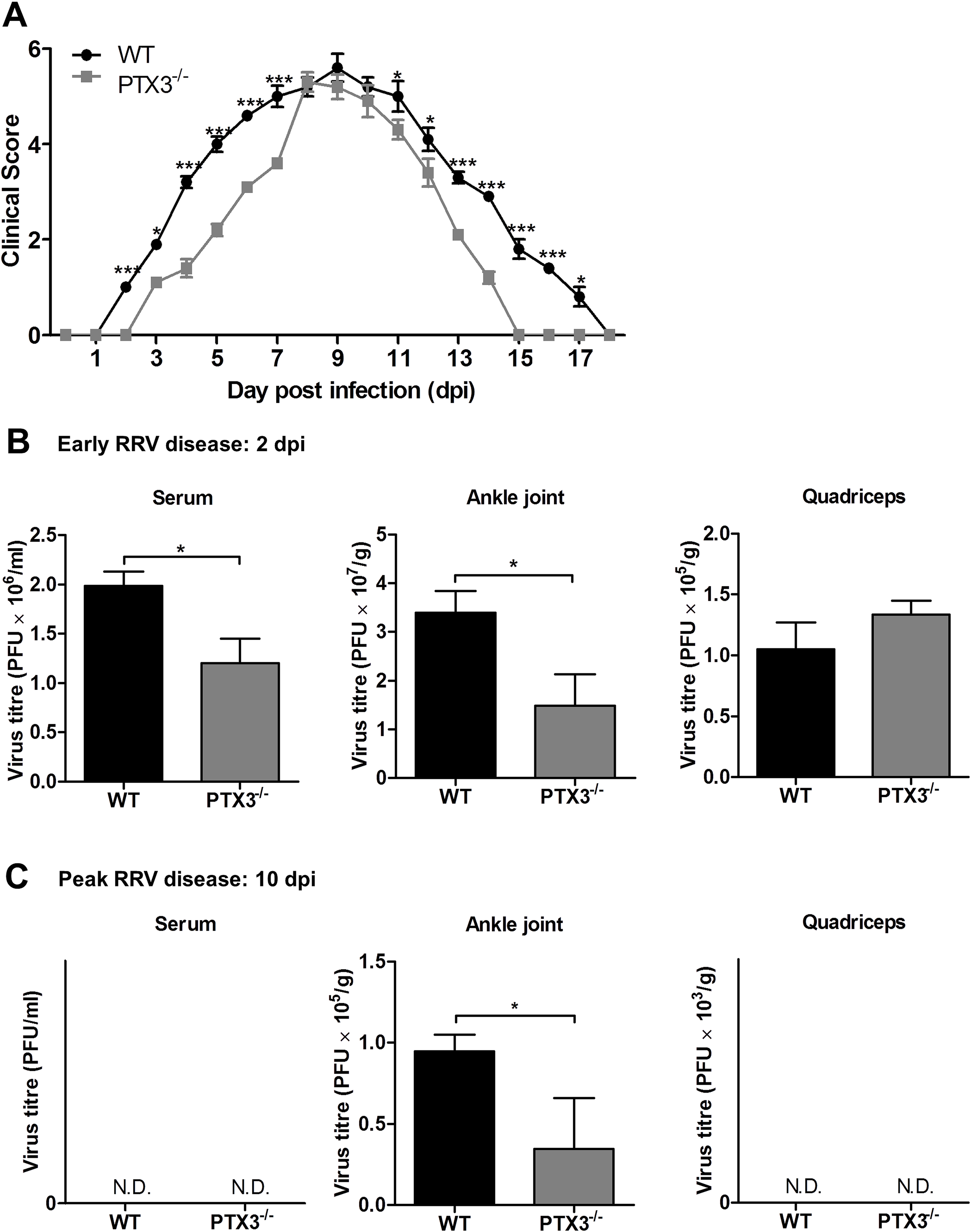 PTX3 modulates RRV replication and disease onset in mice.