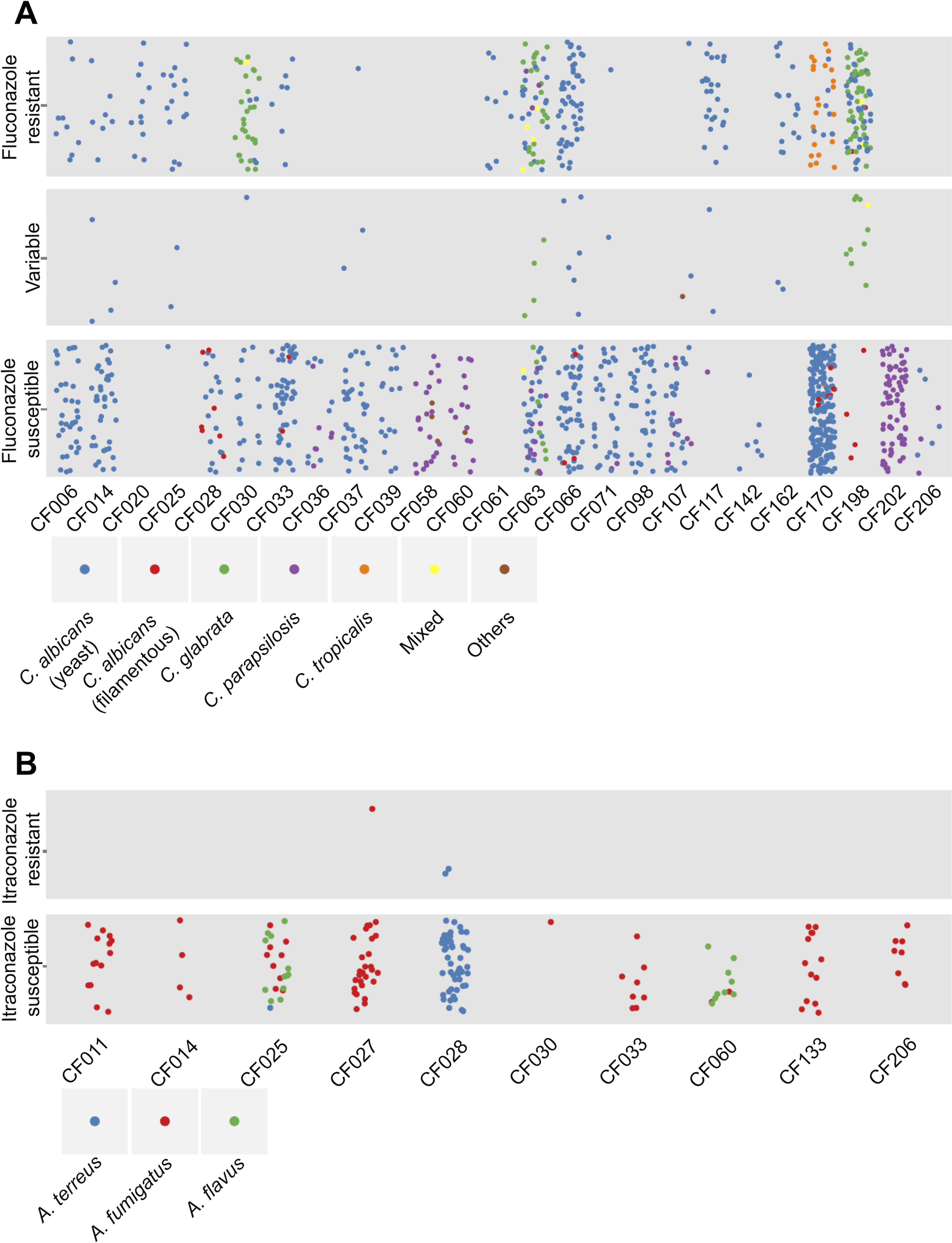 Diversity of species and antifungal resistance profiles of 1,603 fungal isolates from cystic fibrosis patients.