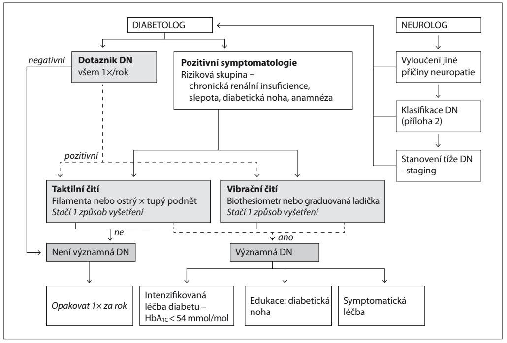 Schéma vyšetření DN vdiabetologické ambulanci (zdroj: Lacigová a kol., 2016)