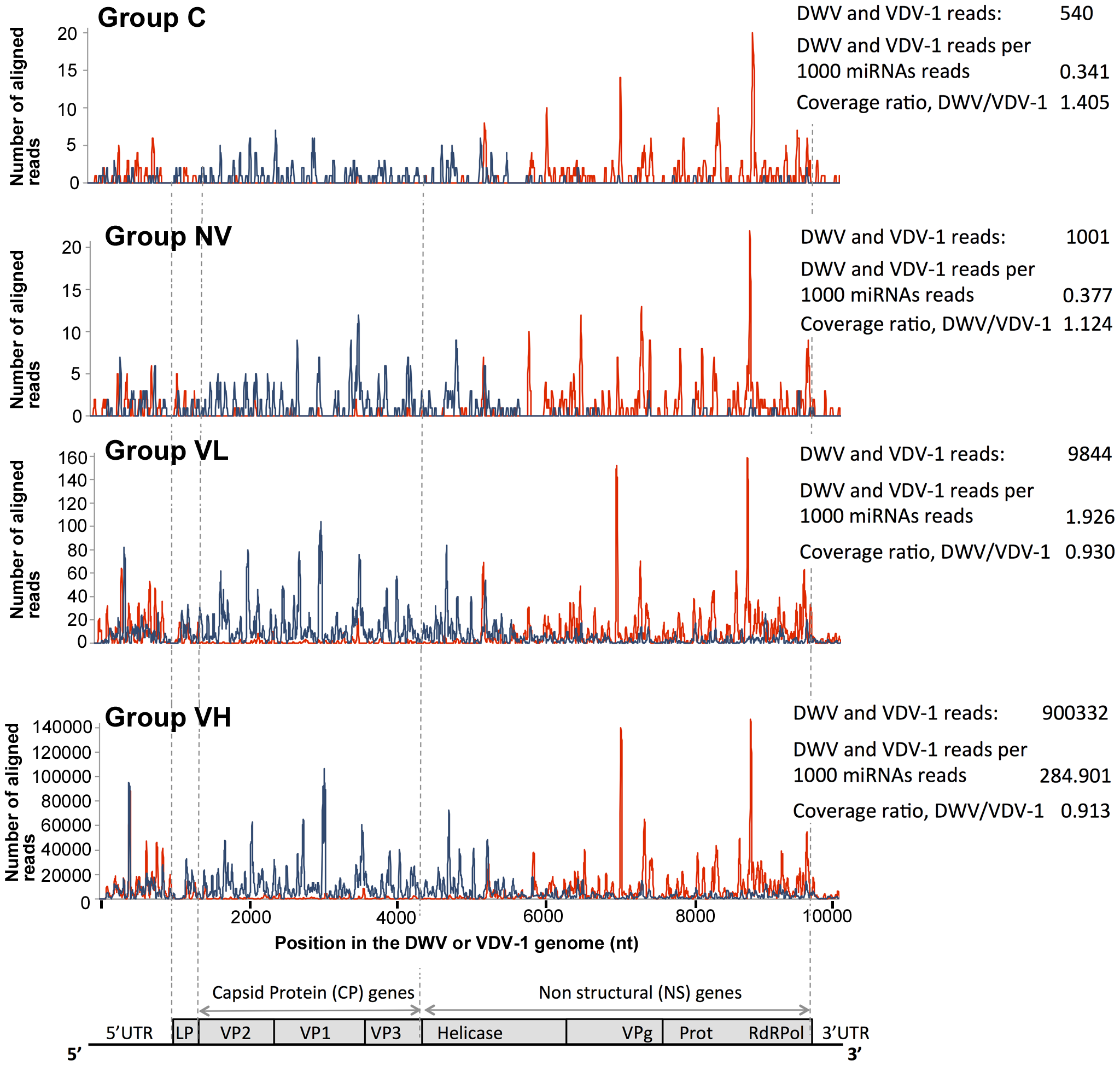 High-throughput sequencing of the honeybee small RNA libraries.