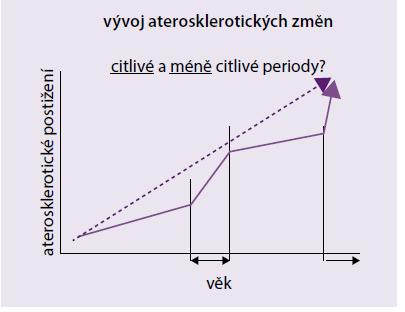 Vývoj aterosklerotických změn v čase